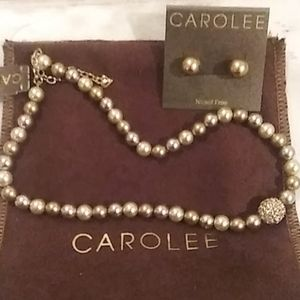 SALE!!!  CAROLEE necklace and earring set